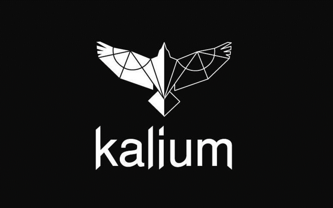 Interview with Katia – Kalium Atelier – about her Crowdfunding Campaign Copy